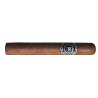 Zino Platinum Robusto - 20 ks